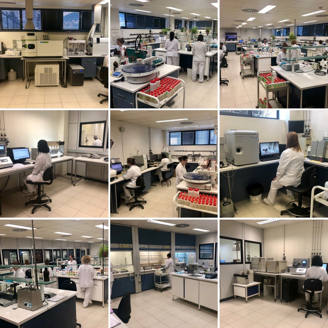 Lab6-1280x1280.jpg